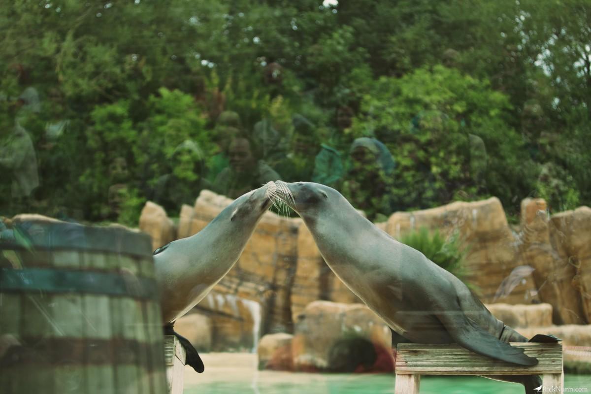 Blackpool Zoo - Blackpool Zoo 25 Photographed by Rick Nunn