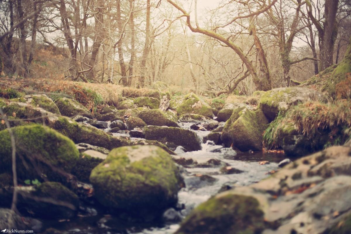 Cumbria in December - Cumbria - 1 - 3 Photographed by Rick Nunn