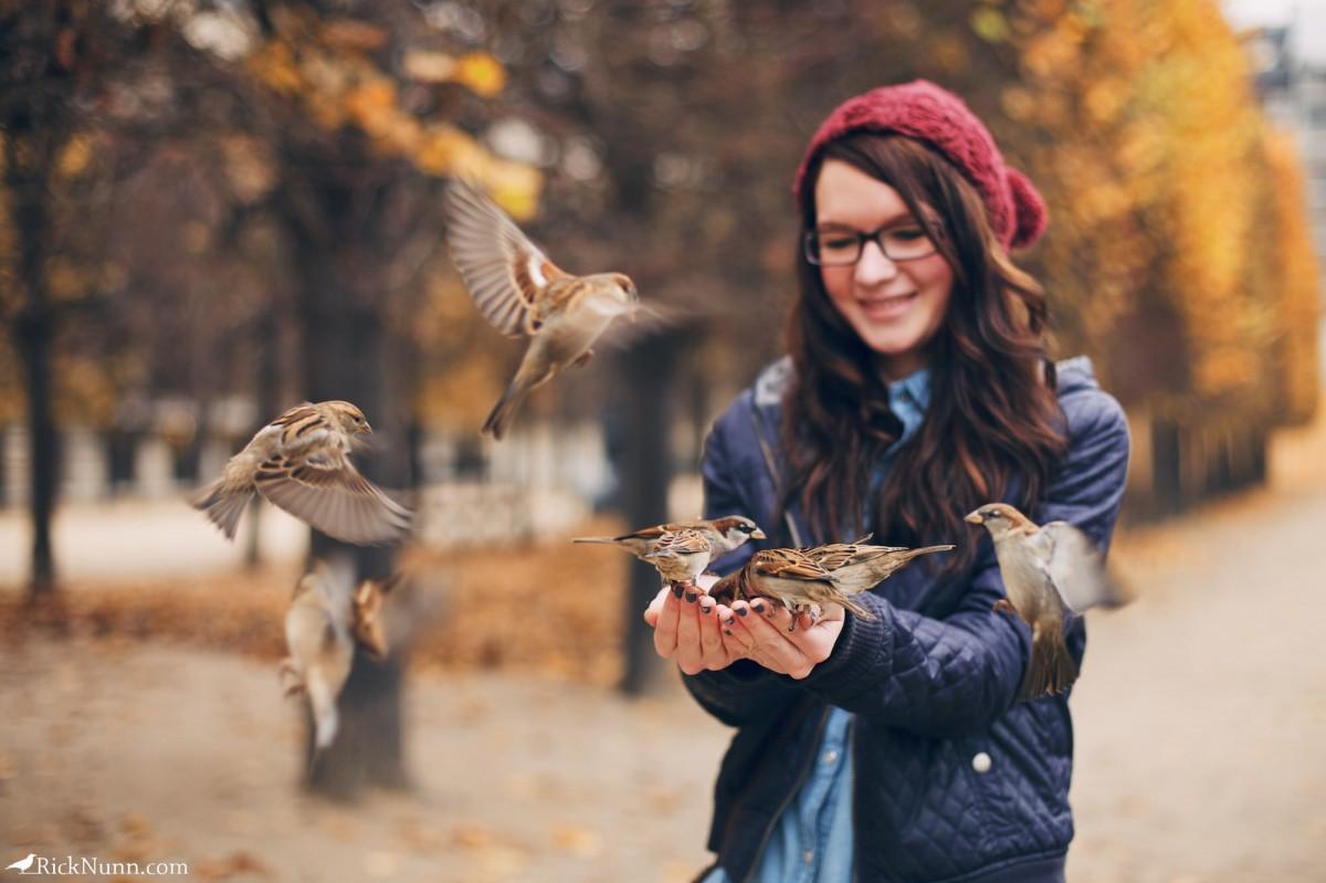 Paris - Sparrows on Sparrow Photographed by Rick Nunn