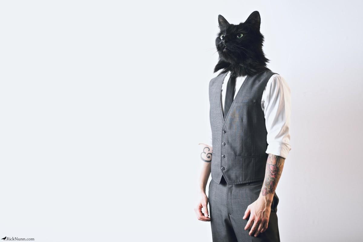 Cody — Portrait Of A Cat - Cody — Portrait Of A Cat Photographed by Rick Nunn