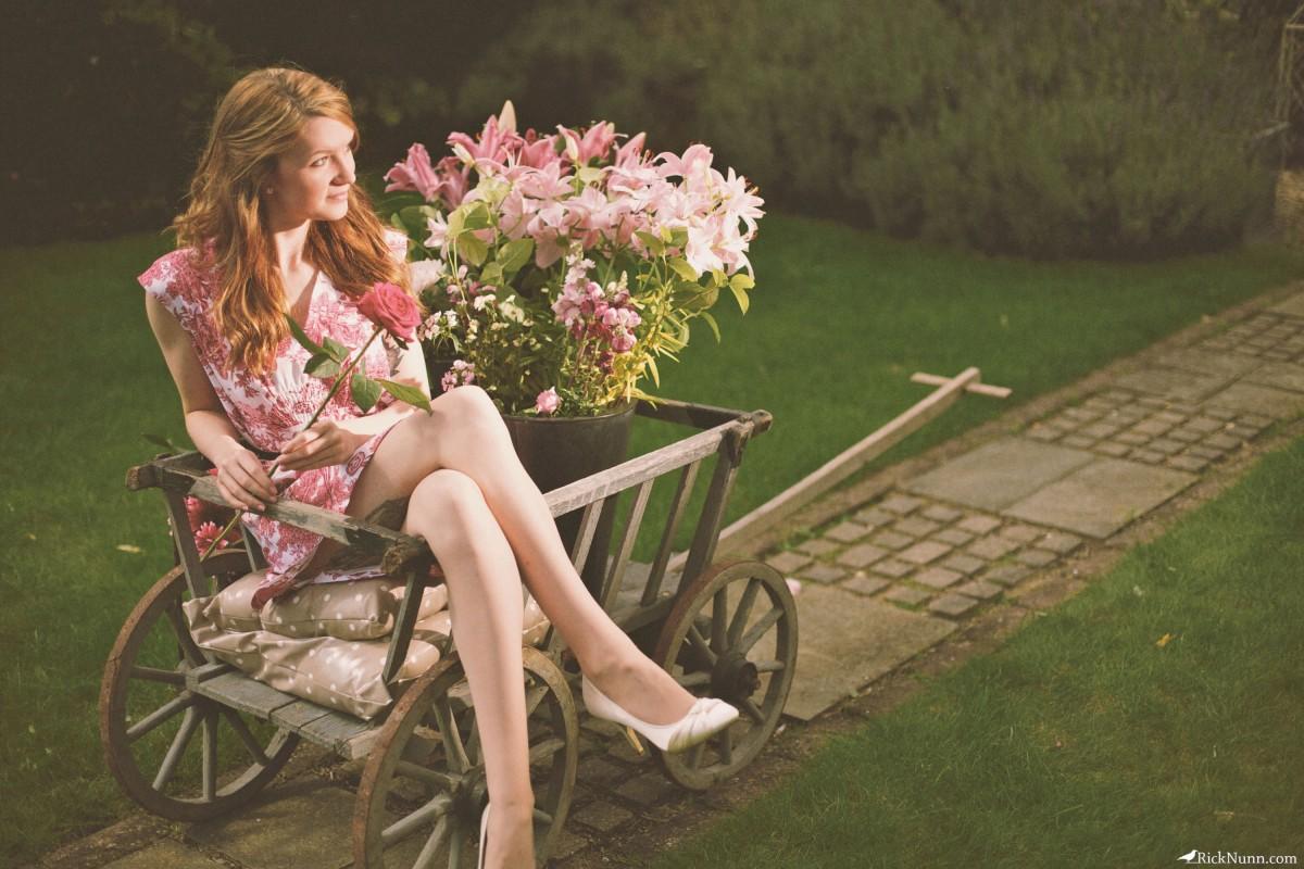 Rose Ambrosia - Rose Ambrosia Alt 3 Photographed by Rick Nunn